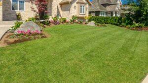 landscaping keller tx 6